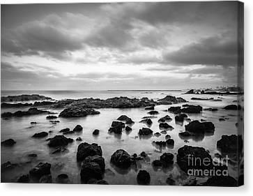 Newport Beach Tide Pools Black And White Photo Canvas Print