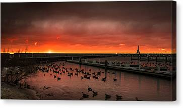 Newport Geese Canvas Print by James Meyer