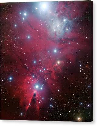 Canvas Print featuring the photograph Ngc 2264 And The Christmas Tree Star Cluster by Eso
