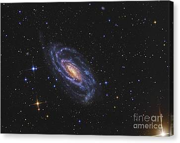 Ngc 5033, A Spiral Galaxy Situated Canvas Print by R Jay GaBany