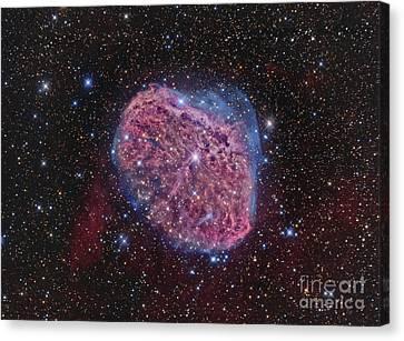 Ngc 6888, The Crescent Nebula Canvas Print by Roberto Colombari