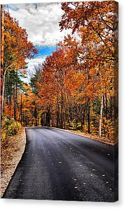 Nh Autumn Road 1 Canvas Print