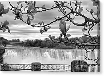 Niagara American Falls Spring Canvas Print