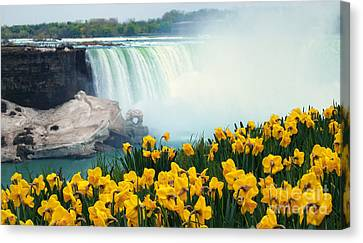 Niagara Falls Spring Flowers And Melting Ice Canvas Print