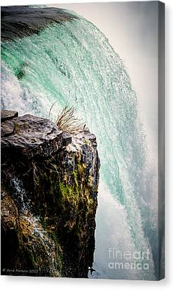 Niagara I Canvas Print by Arne Hansen