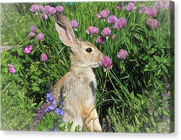 Nibbling On Chives Canvas Print by Donna Kennedy