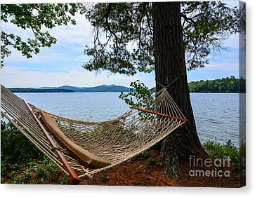 Nice Spot For A Nap Canvas Print