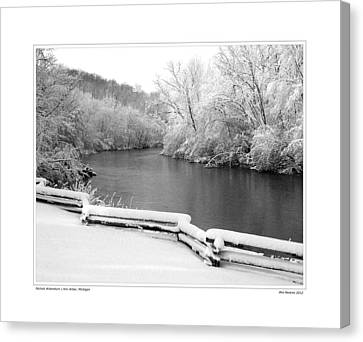 Nichols Arboretum #5 Canvas Print