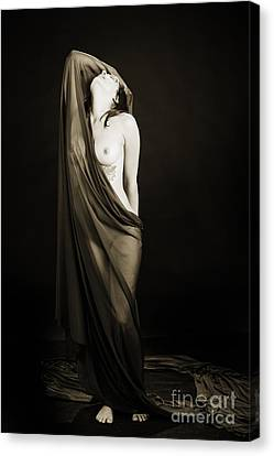 Nicole Female Nude Fine Art Print Photographs   4221.01 Canvas Print by Kendree Miller