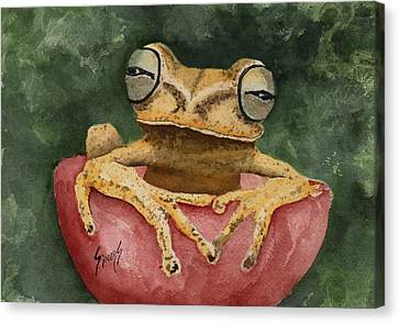 Nic's Frog Canvas Print by Sam Sidders
