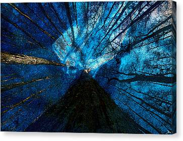 Canvas Print featuring the painting Night Angel by David Lee Thompson
