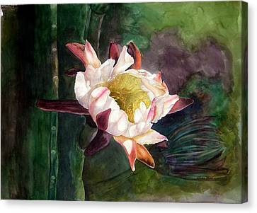 Night Blooming Cereus Canvas Print by Sharon Mick