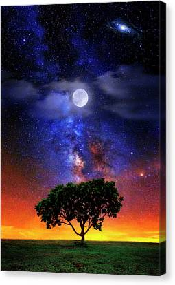 Night Colors Canvas Print by Justin Kelefas