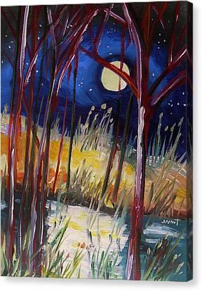 Night Dance Canvas Print by John Williams