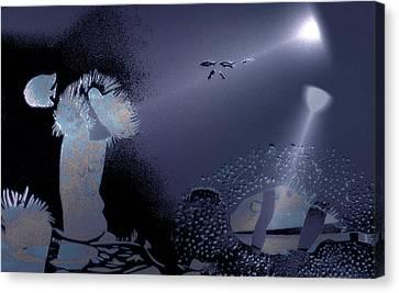 Night Dive Canvas Print by Mushtaq Bhat