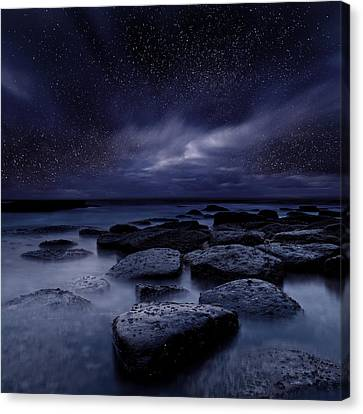 Night Enigma Canvas Print by Jorge Maia