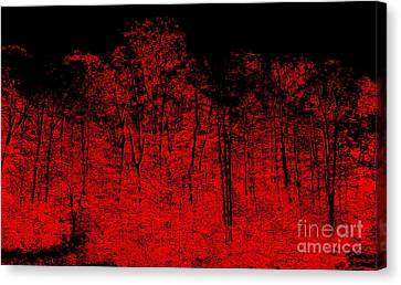 Night Fire Canvas Print