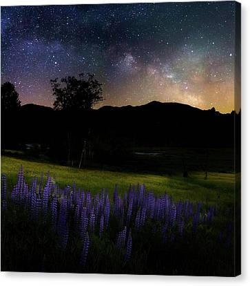 Solar System Canvas Print - Night Flowers Square by Bill Wakeley