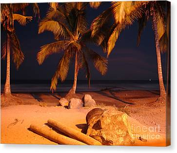 Night Forever Captured Canvas Print by Chad Natti