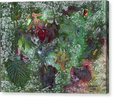 Night Freeze Canvas Print by James Douglas Draper