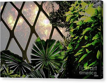 Night In The Arboretum Canvas Print