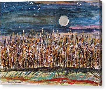 Night In The Cornfield Canvas Print by John Williams