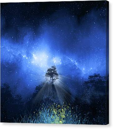 Surreal Landscape Canvas Print - Night Light by Bekim Art