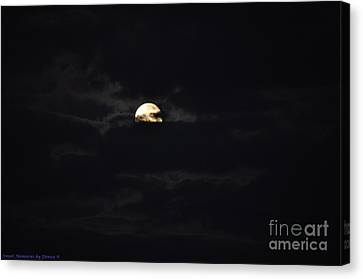 Night Moves 9 Canvas Print