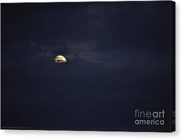 Night Moves Canvas Print