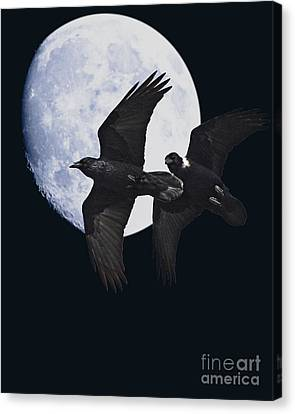 Bif Canvas Print - Night Of The Ravens by Animals Art