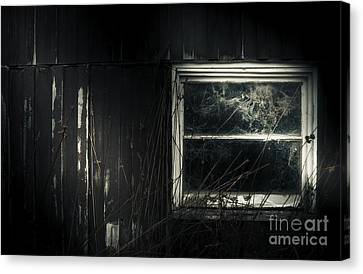 Night Photo Of An Eerie Grunge Window In Moonlight Canvas Print