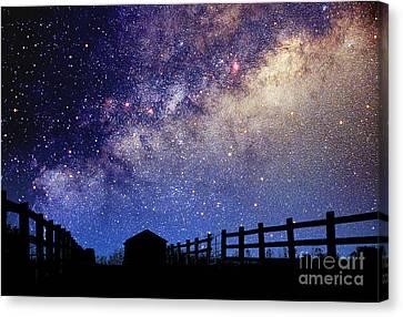 Night Sky Canvas Print by Larry Landolfi and Photo Researchers