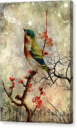 Night Song Canvas Print