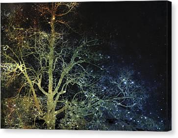 Bare Trees Canvas Print - Night Vision I Lightning Bugs by Lesa Fine