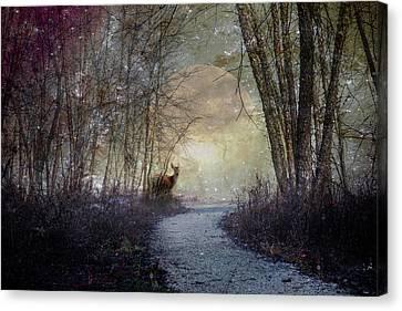 Night Watch Canvas Print by Debra and Dave Vanderlaan
