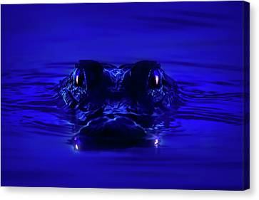 Night Watcher Canvas Print by Mark Andrew Thomas