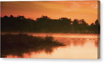 Nightfall Ducks Canvas Print