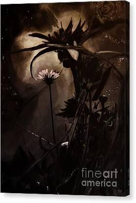 Nightflower Canvas Print by Vanessa Palomino
