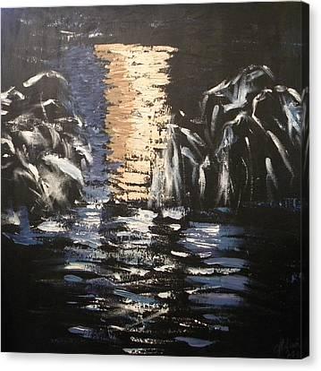 Nightscape Canvas Print by Carmen Kolcsar