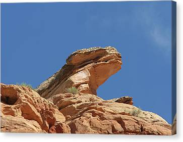 Nine Mile Canyon Utah  Canvas Print by Christine Till