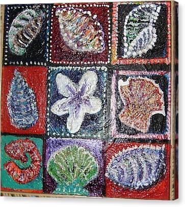 Nine Pretty Shells No Frame Canvas Print by Anne-Elizabeth Whiteway