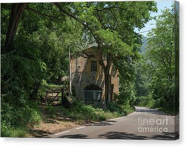 Bamboo House Canvas Print - Ninfa Garden, Rome Italy 9 by Perry Rodriguez