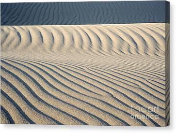 Nipomo Dunes Canvas Print by Ronald Hoggard