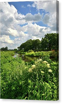 Nippersink Creek In Glacial Park Canvas Print