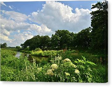 Nippersink Creek Of Mchenry County Canvas Print