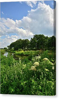 Nippersink Creek Thunderhead Canvas Print