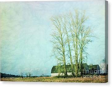 Canvas Print featuring the photograph Nisqually Barns by Jean OKeeffe Macro Abundance Art