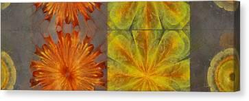 Nitrosulphuric Structure Flower  Id 16165-091210-54530 Canvas Print by S Lurk