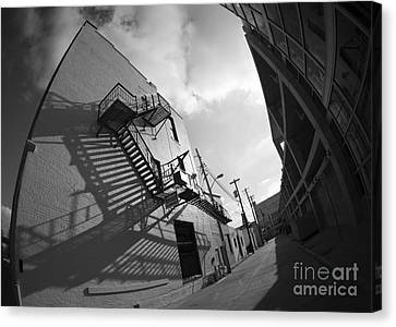 No Escaping Black And White Canvas Print by David Bearden