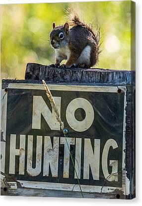No Hunting Canvas Print by Paul Freidlund